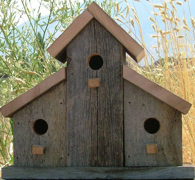 Barn birdhouse pictures joy studio design gallery best for Simple diy birdhouse plans